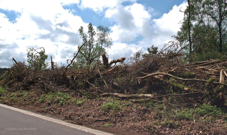 De eerste tornado begon bij de Overasseltse Vennen. Bron: Wouter van Bernebeek.