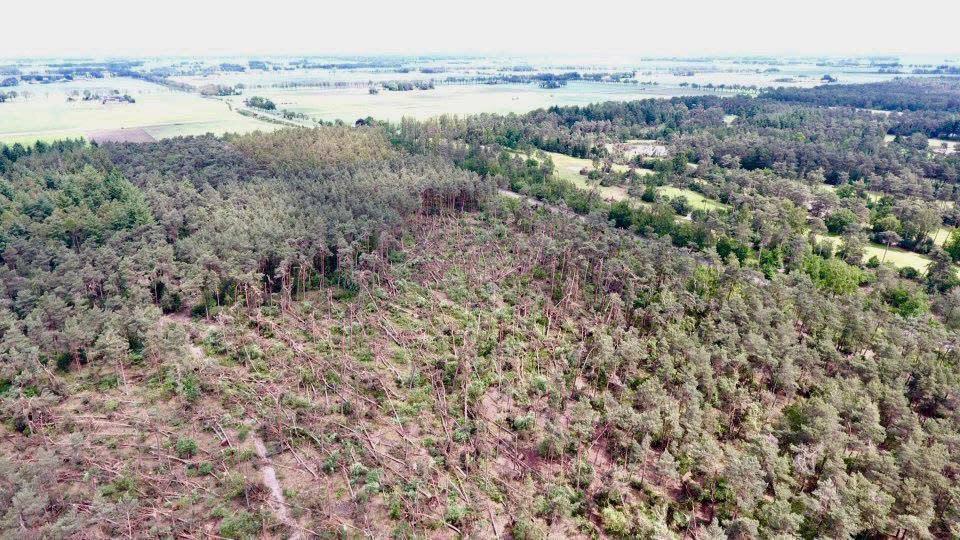 Foto gemaakt door Ageet - Ommen - Geen boom stond meer overeind in het pad van de tornado