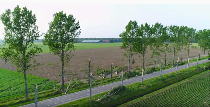 Iets verderop veroorzaakte een andere tornado een schadespoor van circa 40 km. Deze bomen in Kraggenburg knapten als luciferhoutjes af, even later kwam een camping in Vollenhove aan de beurt. Bron: jdverolme (Youtube).