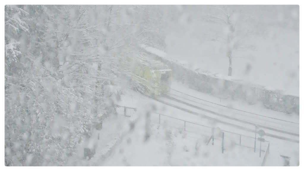 """Foto gemaakt door Carlos Sour - Vaalserberg - """"Wat een Arctische uitbraak! 2021 zit vol verrassingen! Felle sneeuw en inmiddels 15 cm op de Vaalserberg""""."""