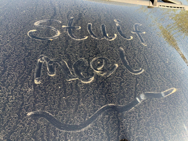 Stuifmeel en klimaatverandering helpen corona - Weer